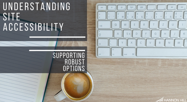 understanding-site-accessibility-supporting-robust-options.jpg