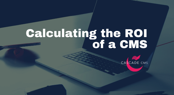 calculating-the-roi-of-a-cms.png
