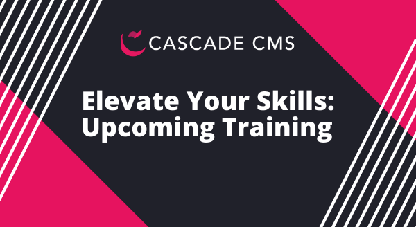 image from Elevate Your Skills: Upcoming Training post