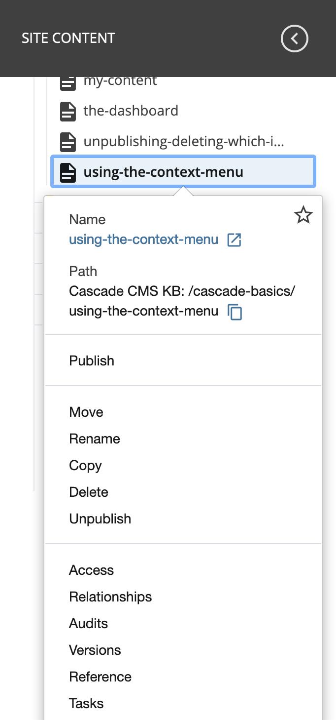 asset context menu